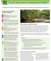 Country approaches to safeguards for REDD+: an outcomes evaluation