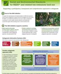 SES Initiative: Supporting a participatory, transparent and comprehensive approach to safeguards