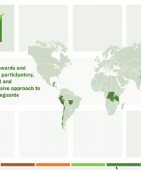 Progress towards and results of a participatory, transparent and comprehensive approach to REDD+ safeguards